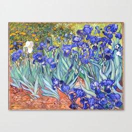 Vincent Van Gogh Irises Canvas Print