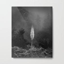 NATURAL GLOW Metal Print