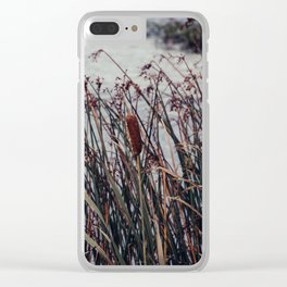 Cattails and pond photograph, Alaska Clear iPhone Case