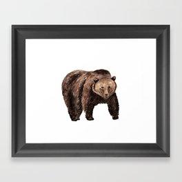 Grizzly Bear, brown bear Framed Art Print