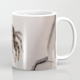 Stalking prey Coffee Mug