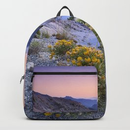 Spring flowers. Piornos. River Dilar Valley. Sunset at the mountains.  Backpack