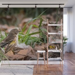 Fall warbler in the leaves Wall Mural