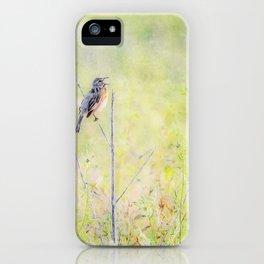 A CAPPELLA iPhone Case