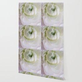 As the petals of a flower Wallpaper