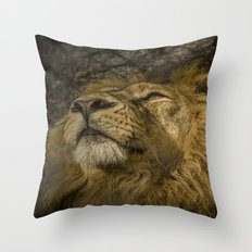 Caught My Eye Throw Pillow