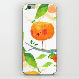 Mandariny iPhone Skin