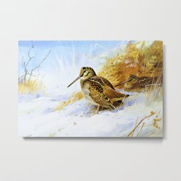 Winter Woodcock - Digital Remastered Edition Metal Print