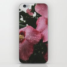 Water Aphrodite  iPhone & iPod Skin