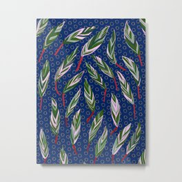 Stromanthe Sanguinera house plant Metal Print