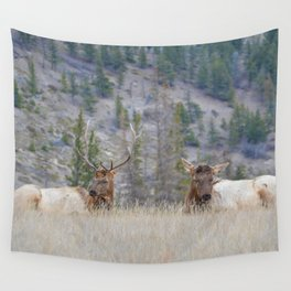 Elk shedding their antlers in Jasper National Park Wall Tapestry