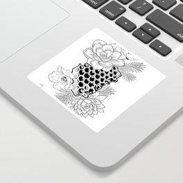 Succulents & Honeycomb Sticker