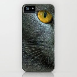 THE LOVE OF CATS iPhone Case