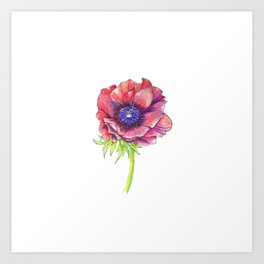 Floral Graphic Design Elements Art Print