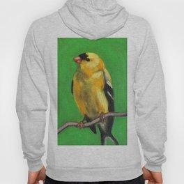 American Goldfinch Bird Hoody