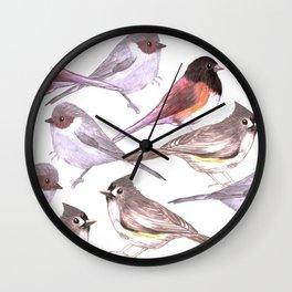 Wild birds in watercolor and pencil Wall Clock
