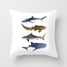 SHARKS II: LEOPARD, BLUE, WHALE & TIGER SHARK Throw Pillow