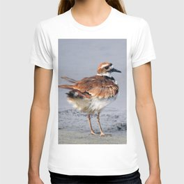 Juvenile Killdeer T-shirt