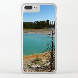 Amazing Hot Spring Colors Clear iPhone Case