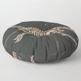 Nothronychus Graffami Skeletal Study Floor Pillow