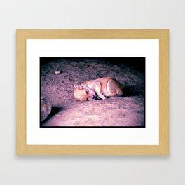 Youngest Dog Framed Art Print