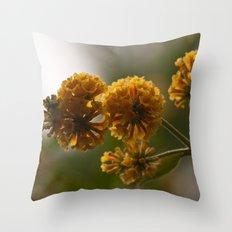 Orange Spray Throw Pillow