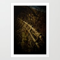 Fences Art Print