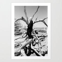 """VAMPLIFIED """"Vampire Beach"""" Art Print"""