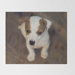 Little puppy dog Throw Blanket