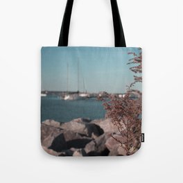 Boat Launch Tote Bag