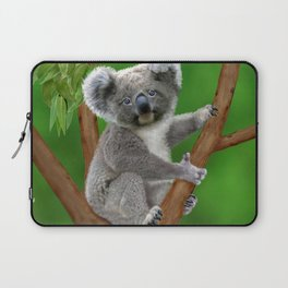 Blue-eyed Baby Koala Bear Laptop Sleeve