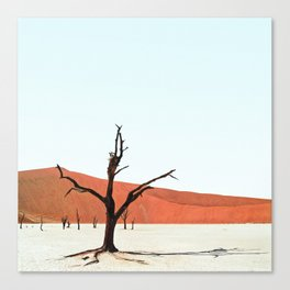Deadvlei XII Canvas Print