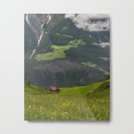 Switzerland Riederalp Photograph, Spring Flowers on the Swiss Alps Metal Print