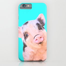 Baby Pig Turquoise Background iPhone Case