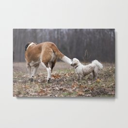 Take the World by the Tail Metal Print