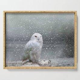 Snowy Owl Serving Tray