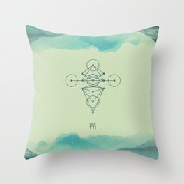 004-0711-17 Throw Pillow