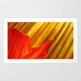 Sun Rays & Blossoms Art Print