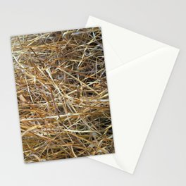 Dry Grass Stationery Cards