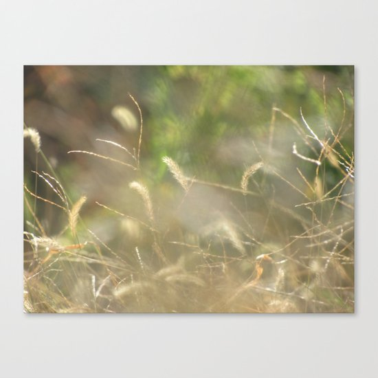 Nature Is My Greatest Inspiration Canvas Print