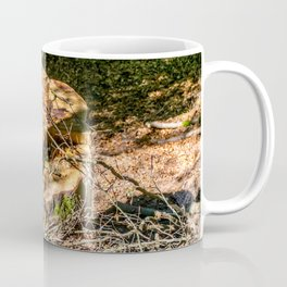 Tree Stump of cut down Tree in the Forest (orange/brown) Coffee Mug