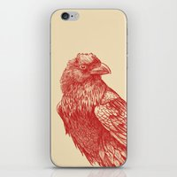 raven iPhone & iPod Skins featuring Red Raven  by Terry Fan