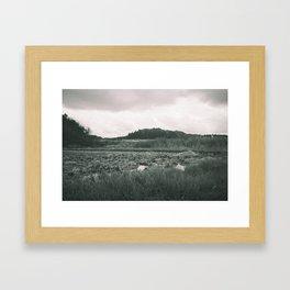 Rice field Framed Art Print