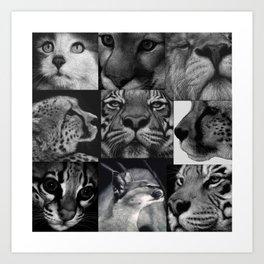 9 big and little cats Art Print