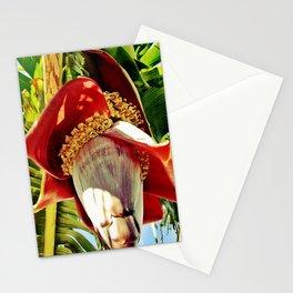 Banana Flower Stationery Cards