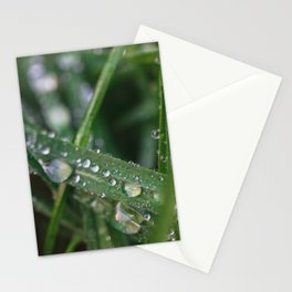 Grass Macro Stationery Cards