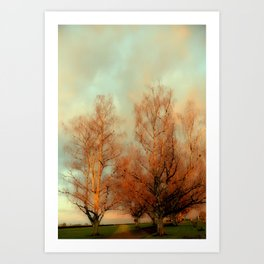 TREES AT SUNSET 3 Art Print