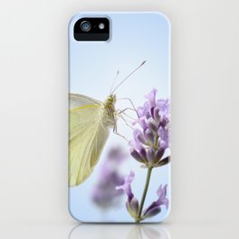 Butterfly 77 iPhone Case