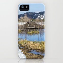 Nice Digs iPhone Case
