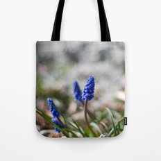Grape Hyacinth II Tote Bag